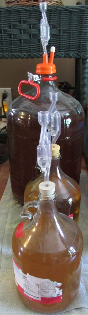 Carboys with airlocks