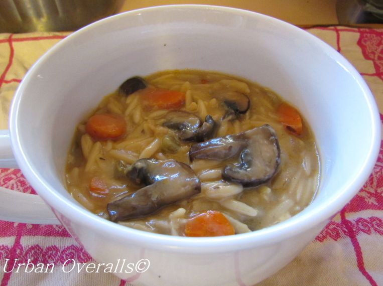 Easy Orzo and Vegetable Soup