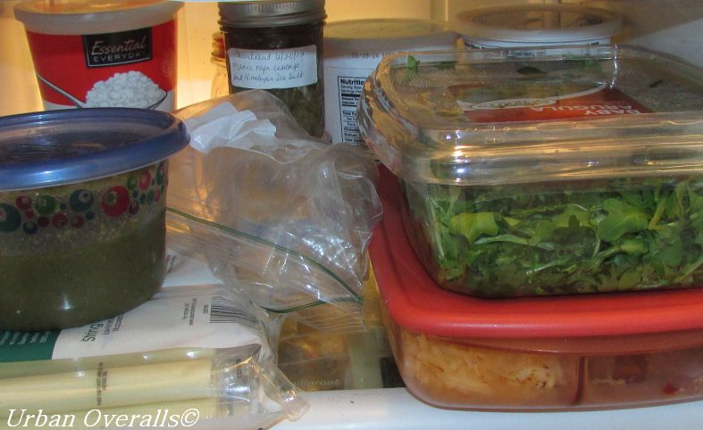 organized food storage