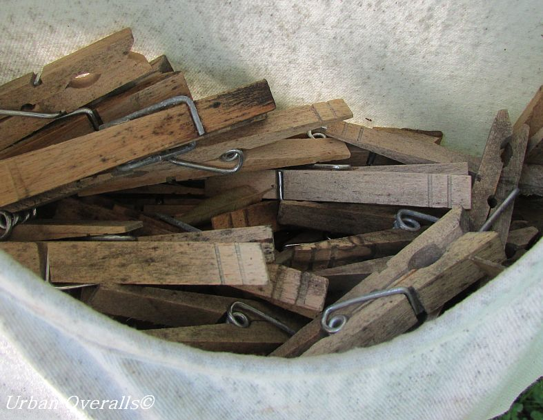 moldy wooden clothes pins
