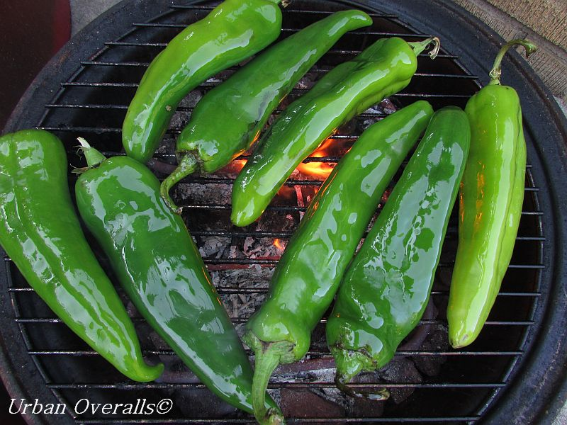 chiles in the smoker