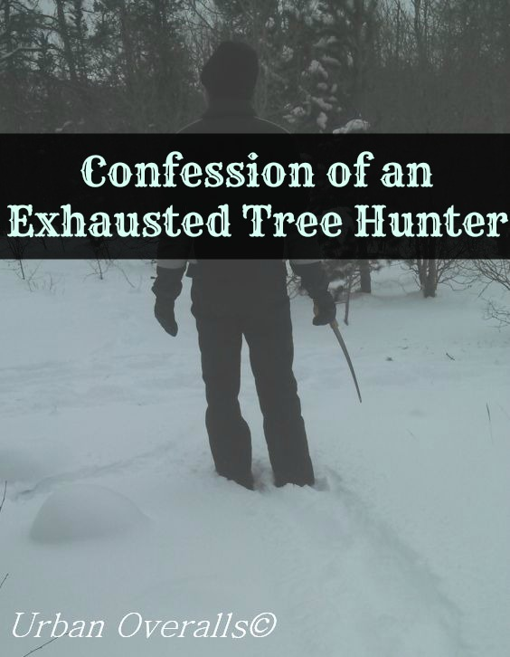 Confession of an Exhausted Tree Hunter