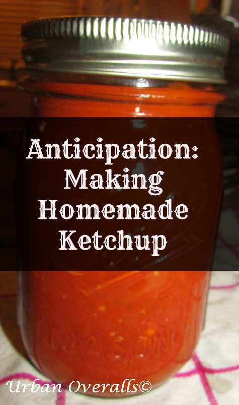 Anticipation…Making Homemade Ketchup