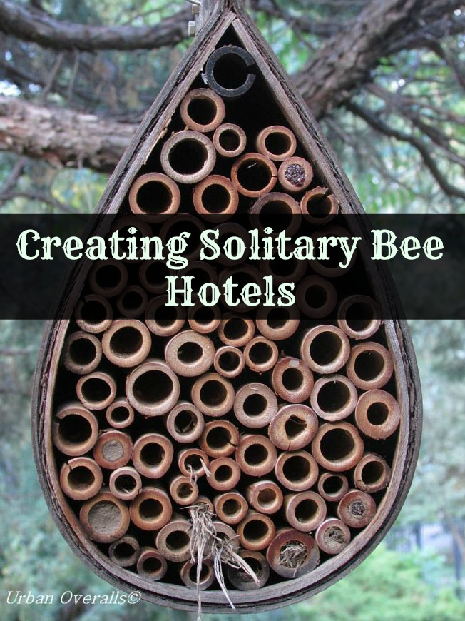Creating Solitary Bee Hotels