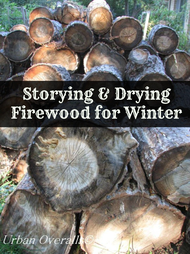 Storing and Drying Firewood for Winter